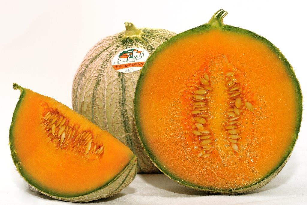 Confr rie des tabliers noirs du haut poitou - Culture du melon charentais ...
